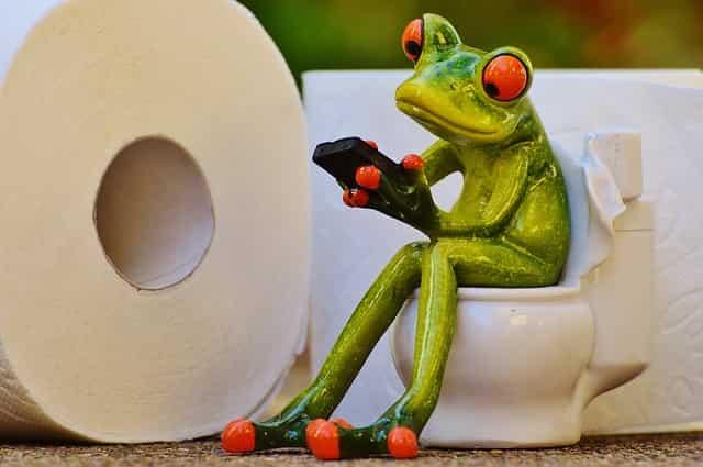 Choosing new Toilet